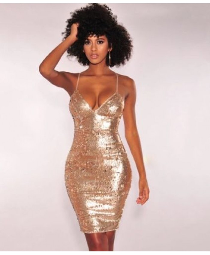 Glitter And Glam Sequin Bodycon Dress, Party Dress, Festival Dress